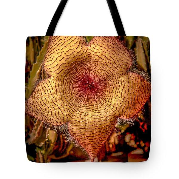 Star Flower Cactus Tote Bag