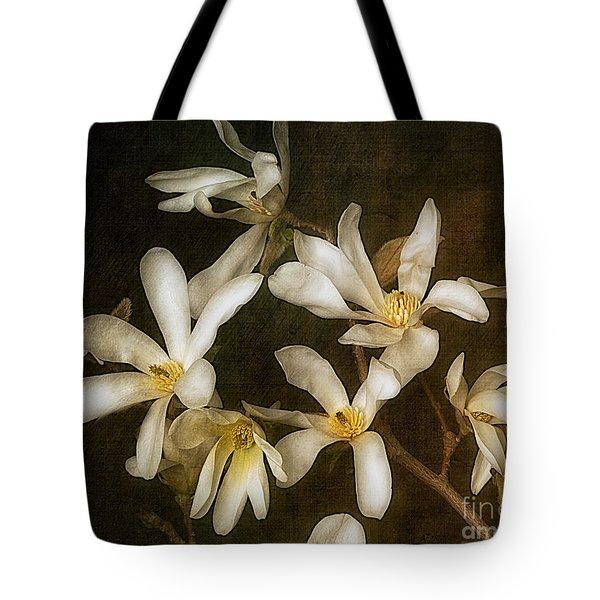 Star Magnolia Tote Bag