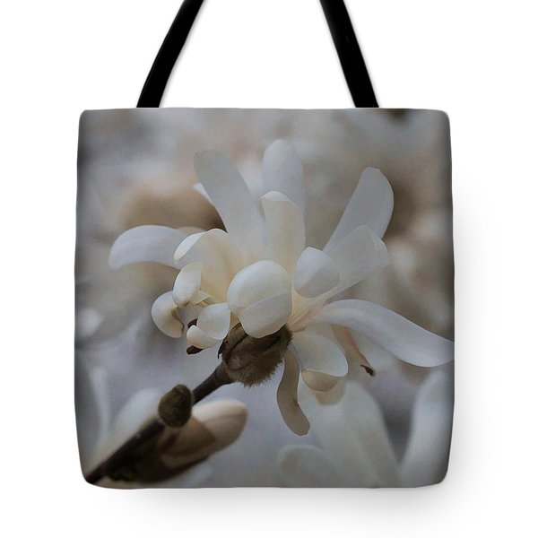 Tote Bag featuring the photograph Star Magnolia by Cathy Donohoue