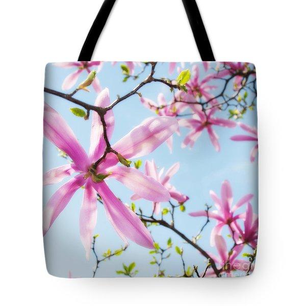 Star Magnolias 4 Tote Bag
