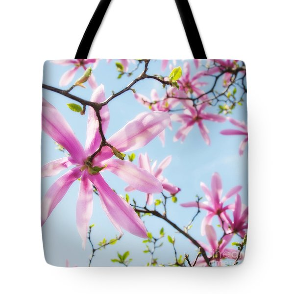 Star Magnolias 4 Tote Bag