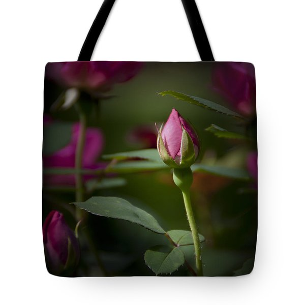 Tote Bag featuring the photograph Star Of The Show by Michele A Loftus