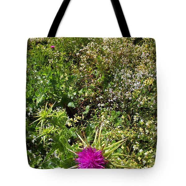 Star Thistle Flower In Marin County California Panorama Tote Bag