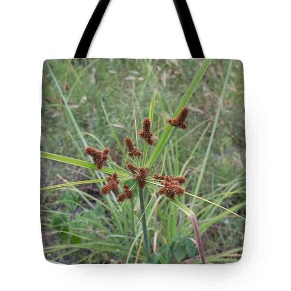 Starburst Of Nature Tote Bag