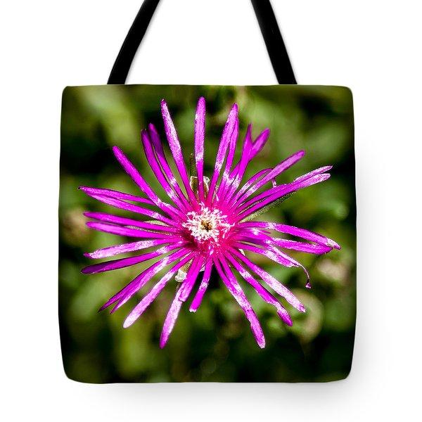 Starburst Of The Wildflowers Tote Bag by John Haldane