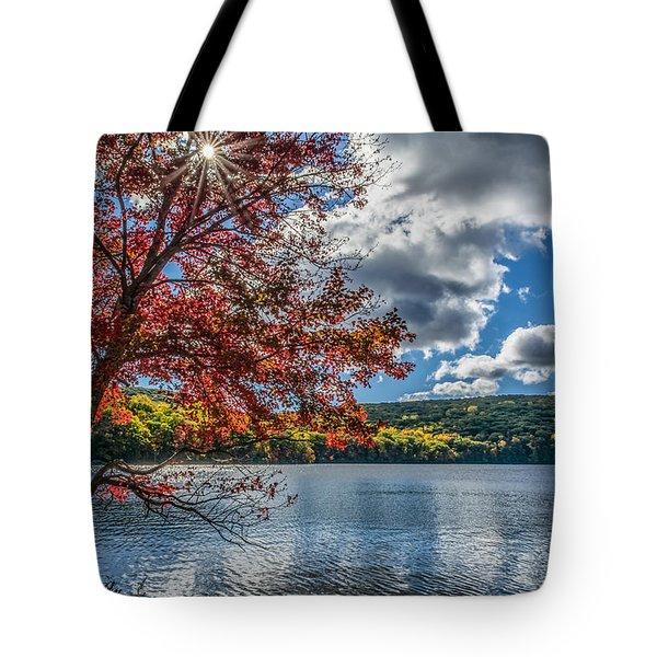 Starburst Tree @ Silvermine Lake Tote Bag by Angelo Marcialis