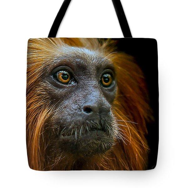 Stare Down Tote Bag