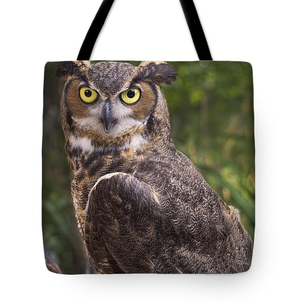 Stare Me Down Baby Tote Bag