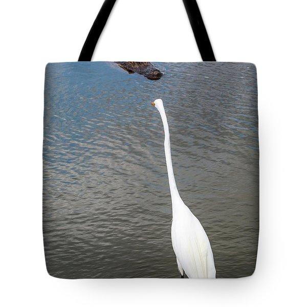 Staredown At Hunting Beach State Park - March 31, 2017 Tote Bag