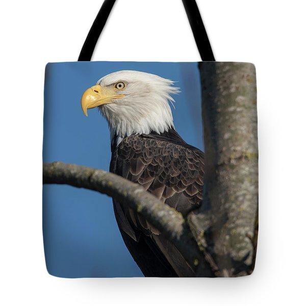 Staredown By Eagle  Tote Bag