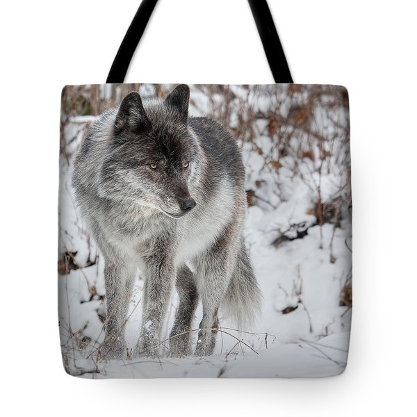 Staredown Tote Bag