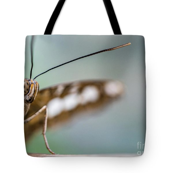 Eye To Eye Tote Bag