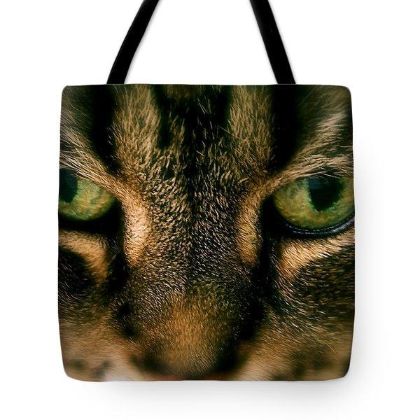 Staredown Tote Bag by Sue Stefanowicz