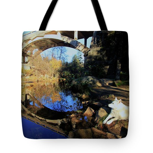 Stargate Tote Bag by Sean Sarsfield