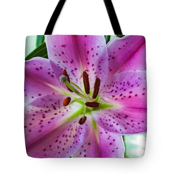 Stargazer Oriental Lily Tote Bag