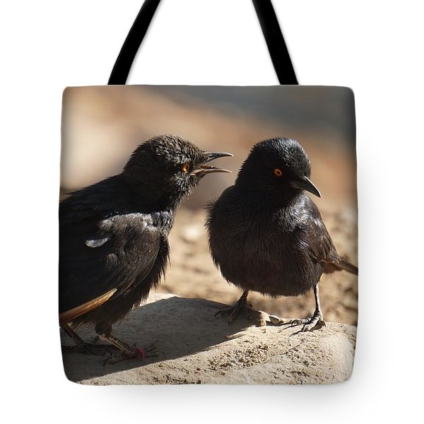 Starling Discussion. Tote Bag