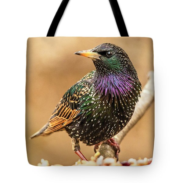 Starling In Glorious Color Tote Bag