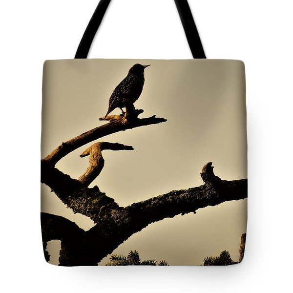 Tote Bag featuring the photograph Starling by Karen Horn