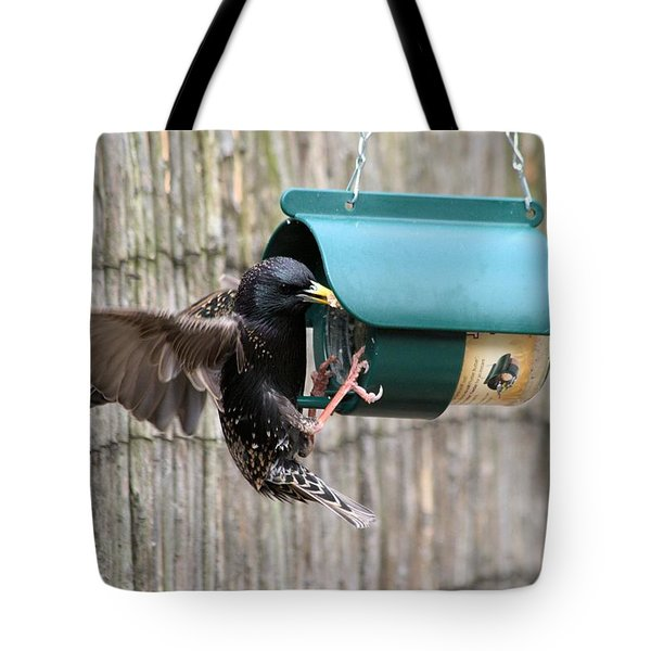 Starling On Bird Feeder Tote Bag by Gordon Auld