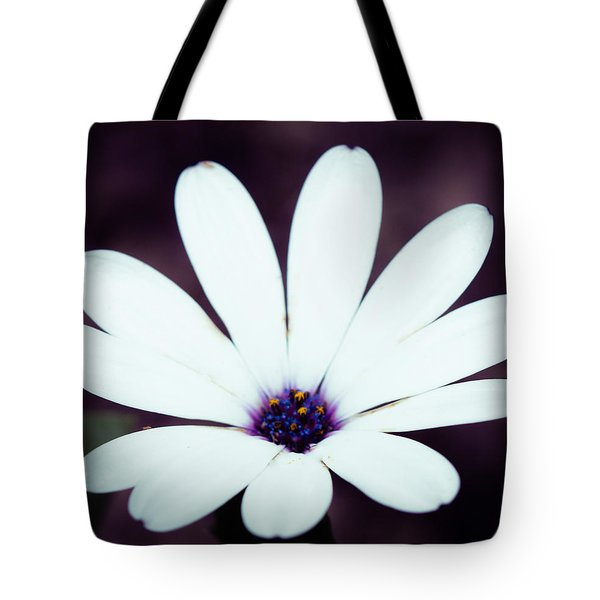 Tote Bag featuring the photograph Stars by Cathy Donohoue