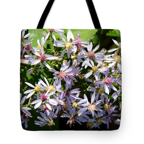 Stars Of The Autumn Tote Bag