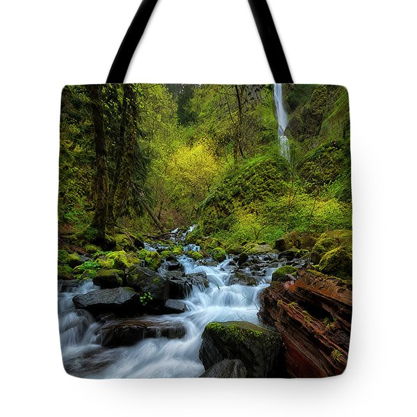 Tote Bag featuring the photograph Starvation Creek And Falls by Ryan Manuel