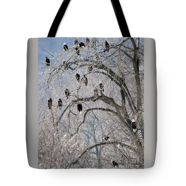 Starved Rock Eagles Tote Bag by Paula Guttilla