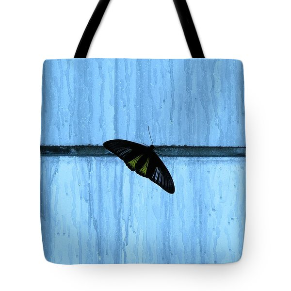 Stasis Tote Bag by Misha Bean