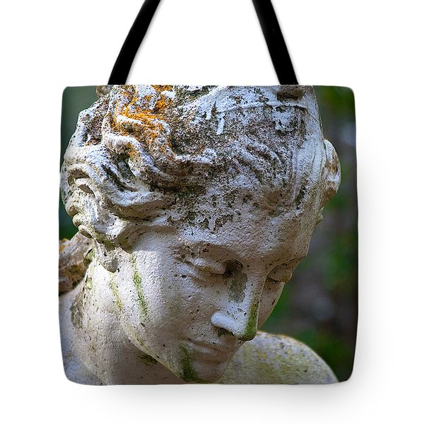 Statue At Magnolia Gardens Tote Bag