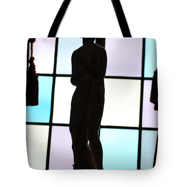Statue In The Shadows Tote Bag