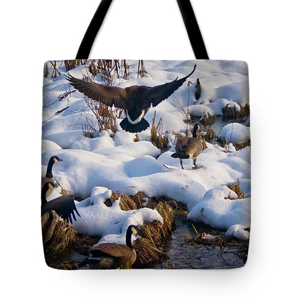 Tote Bag featuring the photograph Staying Put by Albert Seger