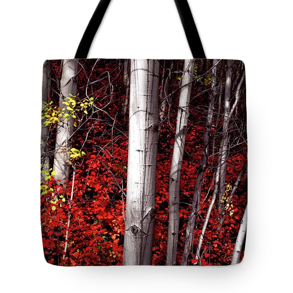 Stealing Beauty Tote Bag