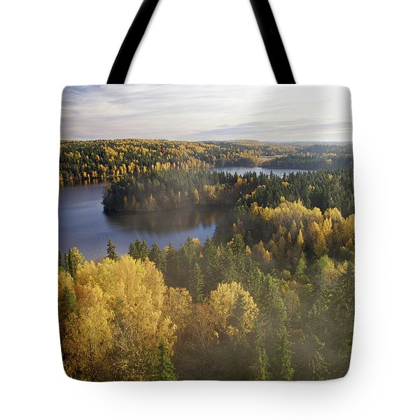Steamy Forest Tote Bag by Teemu Tretjakov