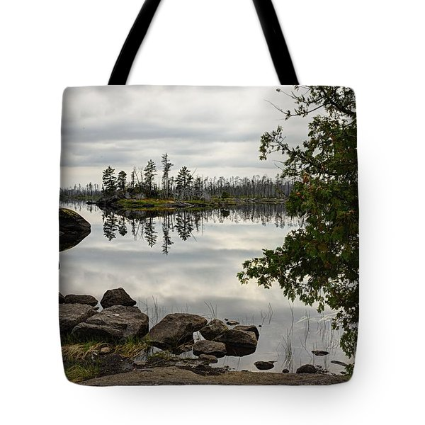 Tote Bag featuring the photograph Steely Day by Larry Ricker