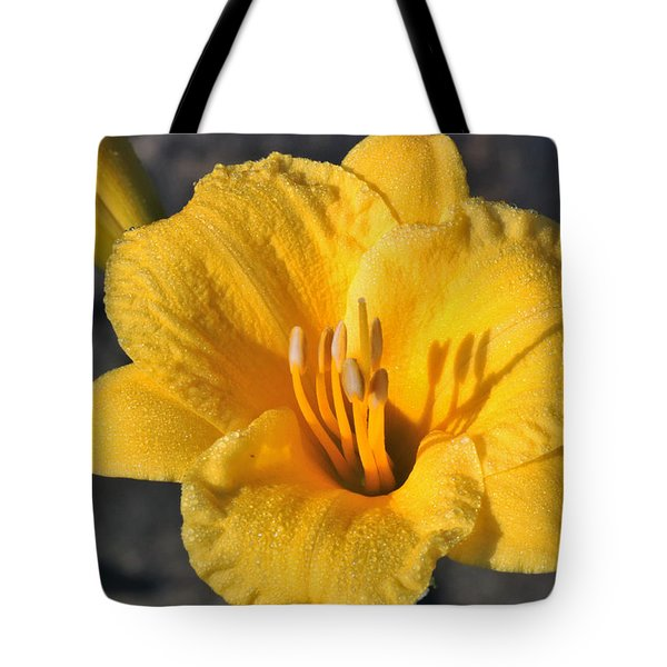 Tote Bag featuring the photograph Stella De Oro And Morning Dew by Sheila Brown