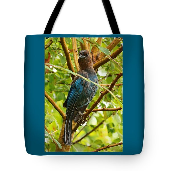 Stellar Model Tote Bag by Steve Warnstaff