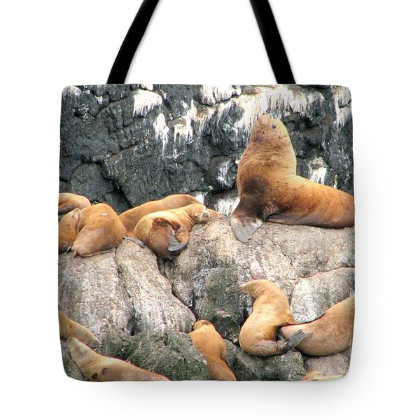 Steller Bull With Harem Tote Bag