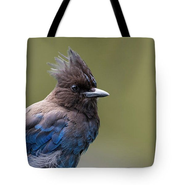 Tote Bag featuring the photograph Steller's Jay Portrait by Kathy King