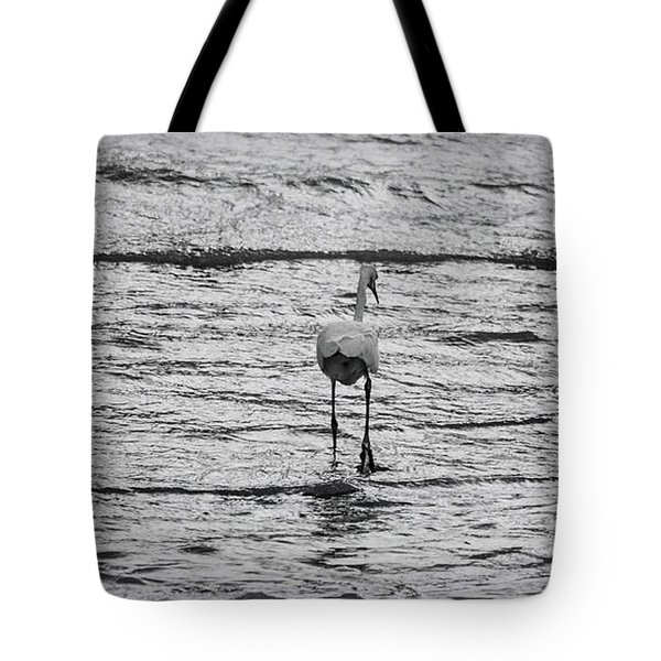 Stepping Out To Sea Tote Bag