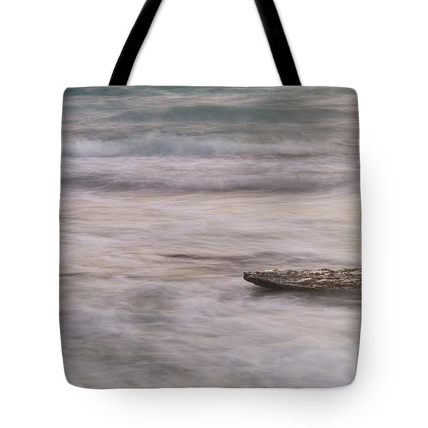 Tote Bag featuring the photograph Stepping Stone by Alex Lapidus