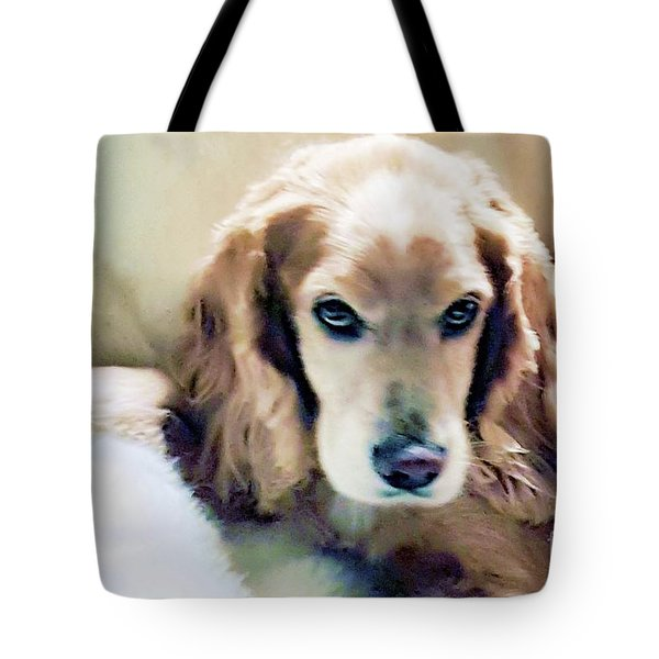 Tote Bag featuring the photograph Stevey And His Fur by Polly Peacock