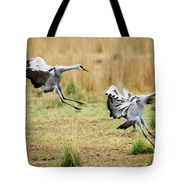 Stick The Landing Tote Bag