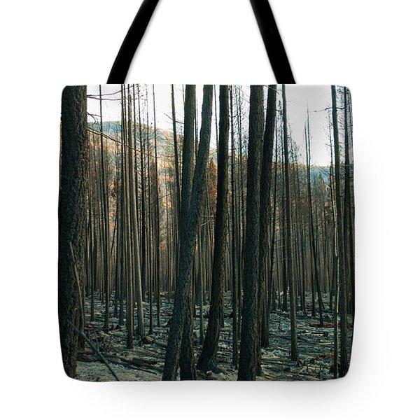 Stickpin Tote Bag
