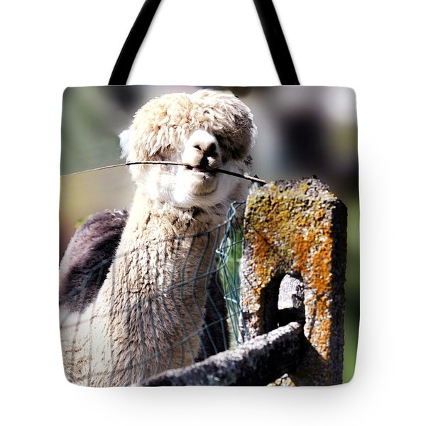 Tote Bag featuring the photograph Sticks Taste Good by Polly Peacock