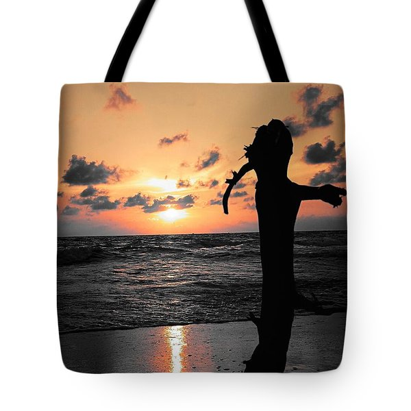 Still By Sea Tote Bag by Rushan Ruzaick