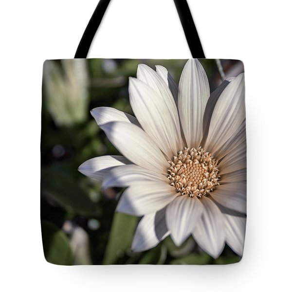 Still Dreaming Tote Bag
