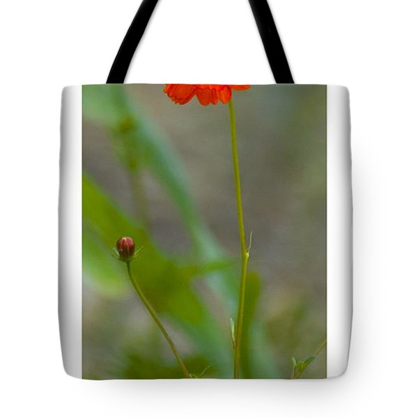 Tote Bag featuring the photograph Still Life In Madrid by R Thomas Berner