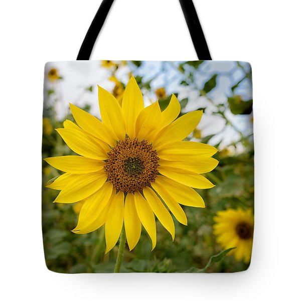 Tote Bag featuring the photograph Still Shinning by Uri Baruch