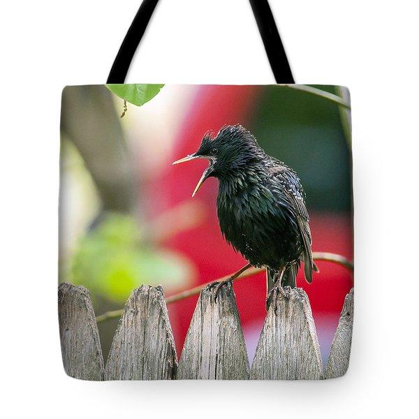 Still Squawking Tote Bag