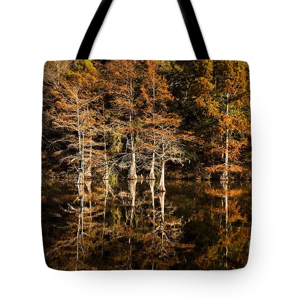Tote Bag featuring the photograph Still Waters On Beaver's Bend by Tamyra Ayles